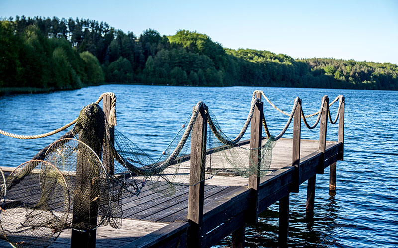 rybaczowka-IMG_0752